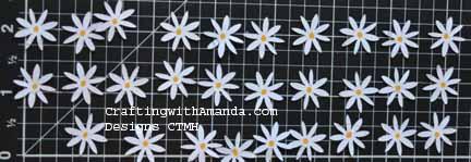 AP-flowers
