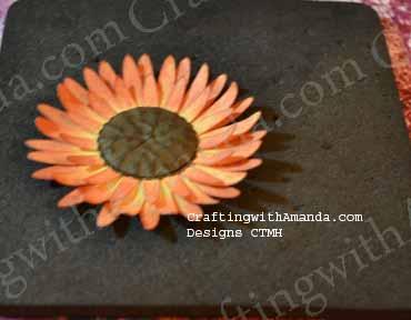 sunflower14